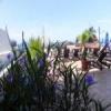 One Beach Street Vallarta 100AAA 11