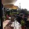 Parrot condo at Puesta Del Sol 15