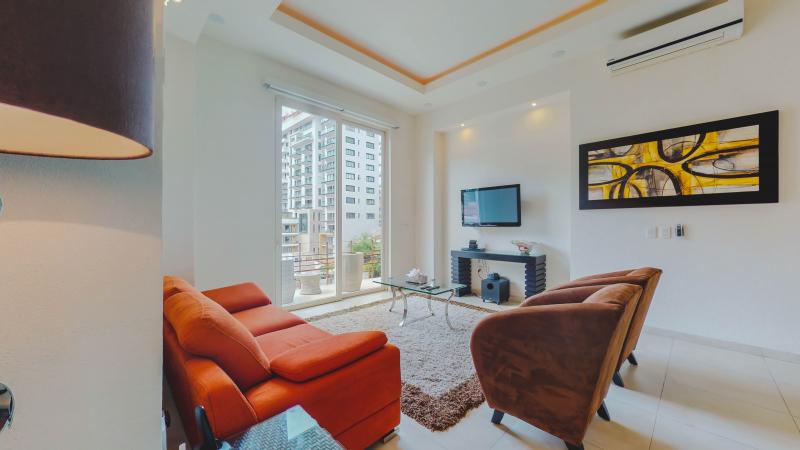 V399 Penthouse 5 6