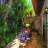 Villa Vista de Aves 3-5 Bedroom 26