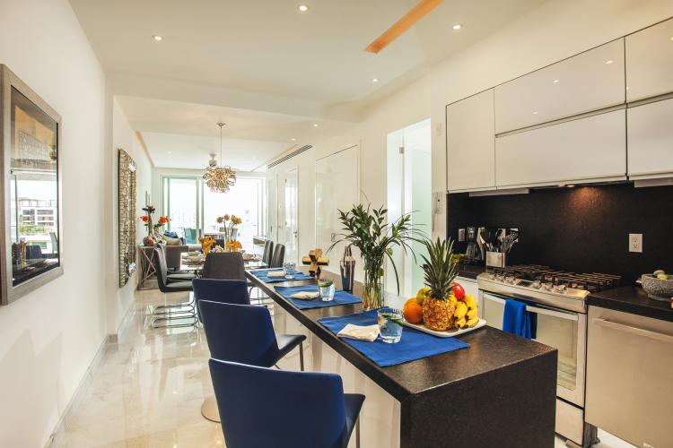 D Terrace Penthouse 4  4