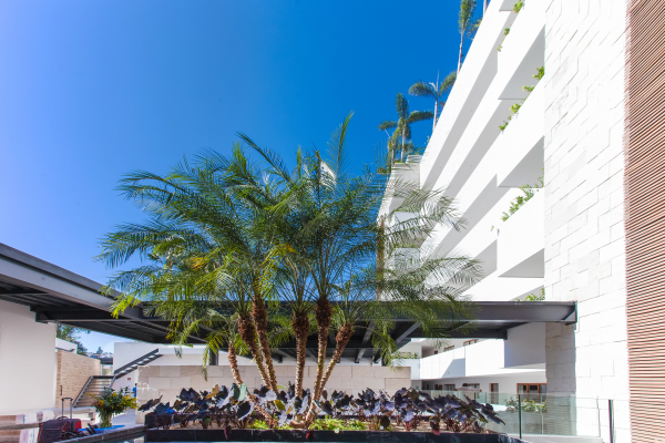 Sayan Beach-Casa Marriott 33