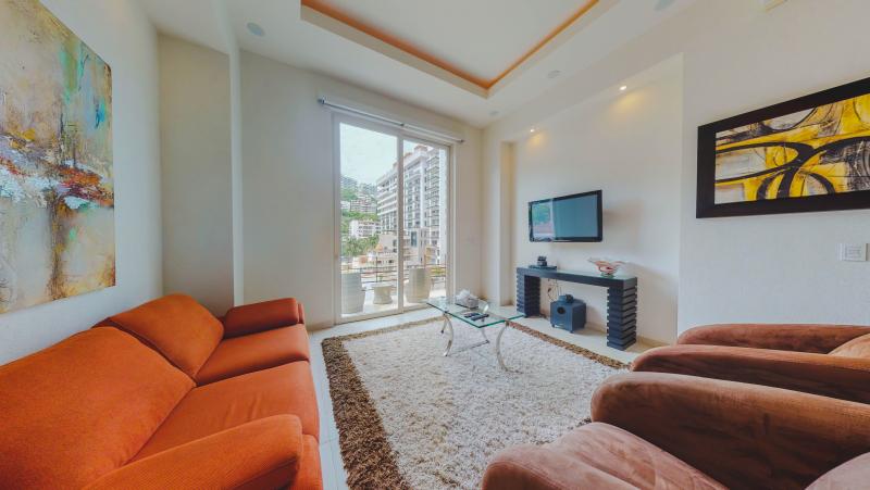 V399 Penthouse 5 9